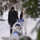 Video of a Couple with a Child Walks Through the Snow Park. A Man Wearing a Black Jacket, Dark Blue