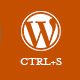 WordPress CTRL+S