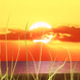 Sun Rise - VideoHive Item for Sale