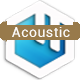 Acoustic Guitar and Strings
