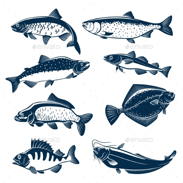 Sea and River Fishes Vector Isolated Icons - Animals Characters