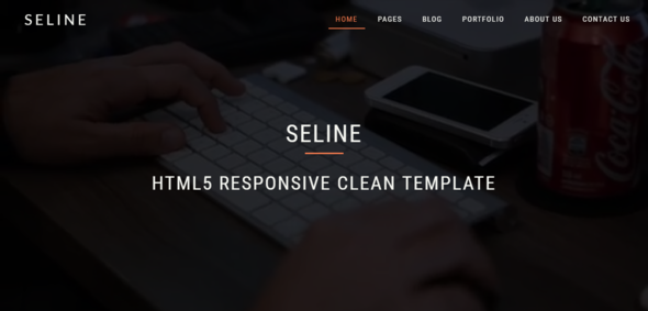 Seline - HTML5 Responsive Clean Template - Creative Site Templates