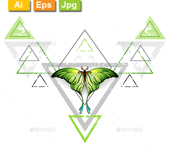 Geometric Pattern with Green Butterfly - Decorative Vectors