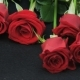 Red Roses Lying on the Floor - VideoHive Item for Sale