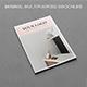 Minimal Modern Brochure - GraphicRiver Item for Sale