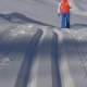 Track From Cross-Country Skiing - VideoHive Item for Sale