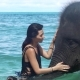 Girl Petting the Elephant in the Ocean