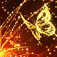 Gold Flower and Butterflies - VideoHive Item for Sale