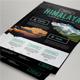 Travel / Adventure Package Flyer