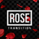 Rose Transitions - VideoHive Item for Sale