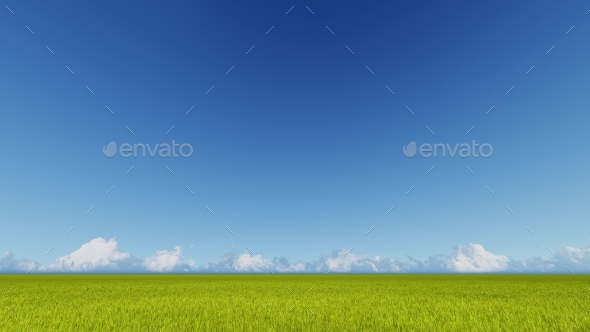 Green Grass Field and Bright Blue Sky 3D Rendering - 3D Backgrounds
