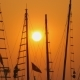 Masts of Ships and Boats at Sunset. . - VideoHive Item for Sale
