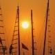 Masts of Ships and Boats at Sunset. .