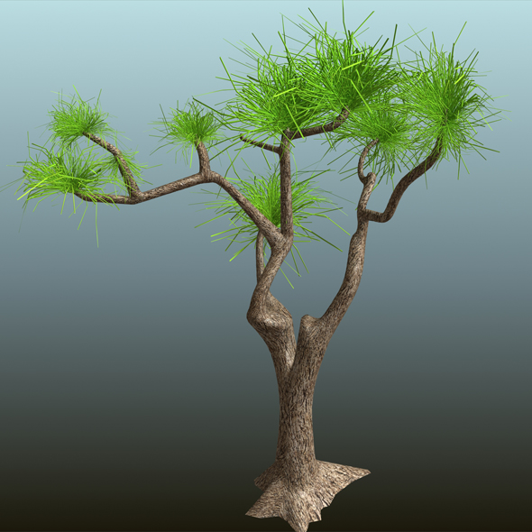 Tree_01 - 3DOcean Item for Sale