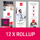 Rollup Stand Banner Display 12x Indesign Template - GraphicRiver Item for Sale