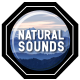 Lightning Sound Effects