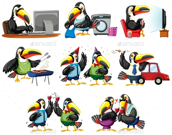 Toucan Birds in Different Actions - Animals Characters