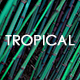 Tropical Indie Pop