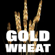 Gold Wheat - VideoHive Item for Sale