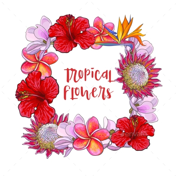 Square Frame of Tropical Flowers and Palm Leaves - Flowers & Plants Nature
