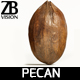 Pecan 001 - 3DOcean Item for Sale