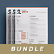 Clean Resume/Cv Bundle Vol.3 - GraphicRiver Item for Sale