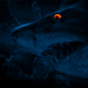 Shark Swims Past At Night With Glowing Eyes - VideoHive Item for Sale