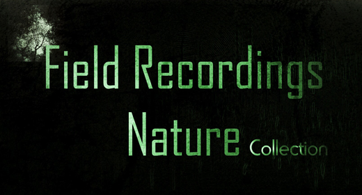 Field Recordings - Nature