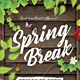 Spring Break / Festival Flyer - GraphicRiver Item for Sale