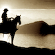 The Lonely Horseman