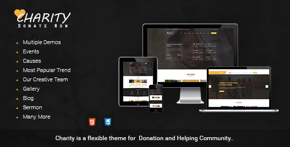 Charity Donation | Nonprofit / Fundraising HTML Template