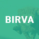 Birva - Creative One Page WordPress Theme - ThemeForest Item for Sale