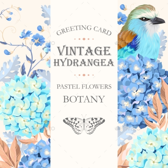 Greeting Card with Hydrangea - Flowers & Plants Nature