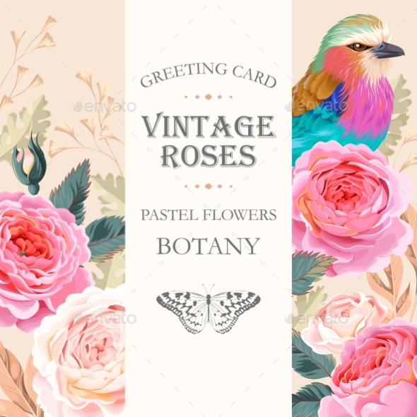 Greeting Card with Roses - Flowers & Plants Nature