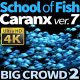 School of Fish Caranx-7 - VideoHive Item for Sale