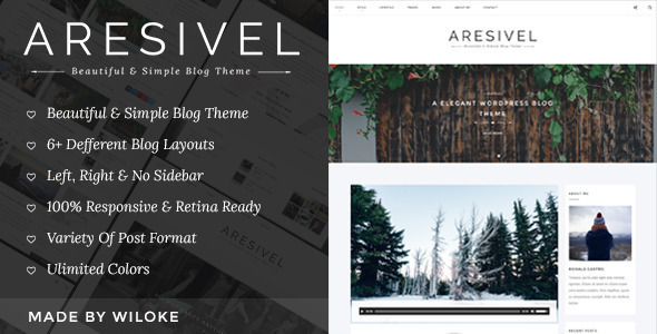 Aresivel - A Responsive WordPress Blog Theme - Personal Blog / Magazine