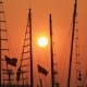 Masts of Ships and Boats at Sunset - VideoHive Item for Sale