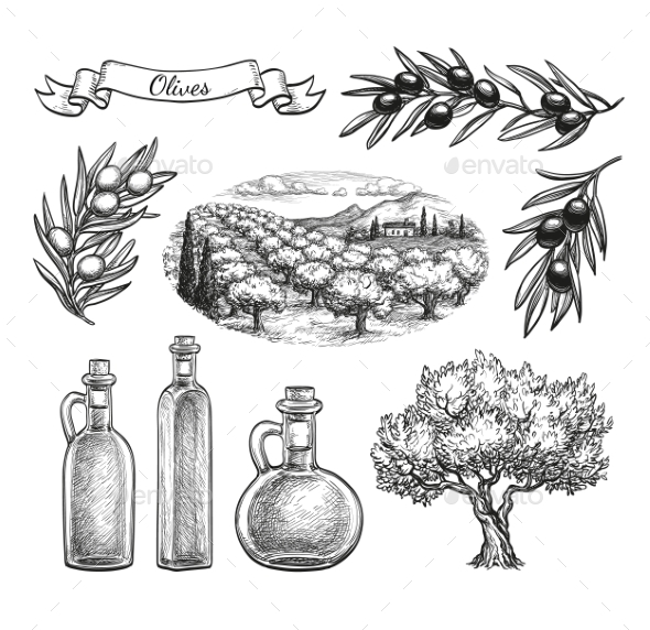 Hand Drawn Olive Set - Flowers & Plants Nature