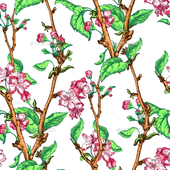 Apple Tree Sketch Design - Flowers & Plants Nature