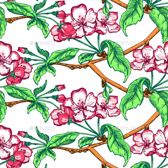 Apple Flower Sketch Pattern - Flowers & Plants Nature