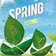 Spring Festival Flyer - GraphicRiver Item for Sale