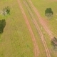 Aerial View Green Rural Landscape