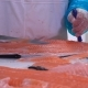 Worker Slicing a Fillet of Salmon at Table on the Fish Factory