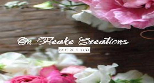 Onfleekcreationsmexico