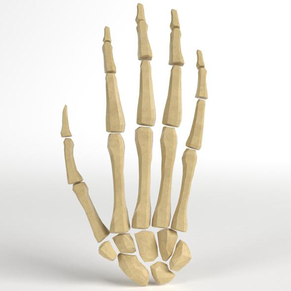 Anatomy - Human Hand Bones - 3DOcean Item for Sale