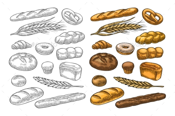 Set Bread. Vector Color Vintage Engraving - Food Objects