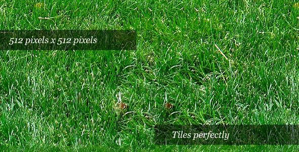Grass Texture II - 3DOcean Item for Sale