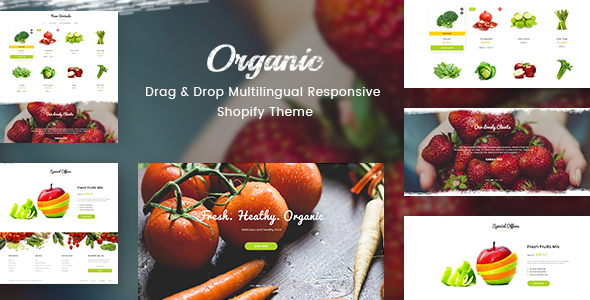 Organic – Drag & Drop Multilingual Responsive Shopify Theme