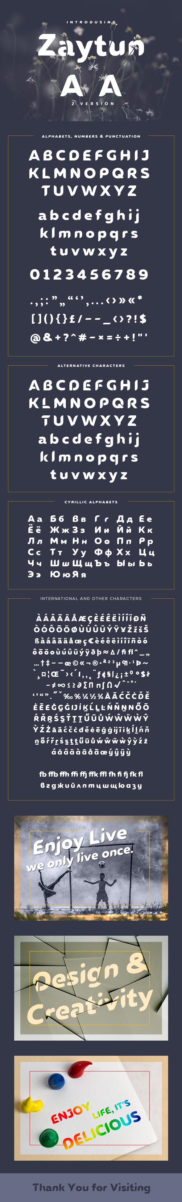Zaytun Typeface - Sans-Serif Fonts