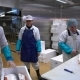 Working Team In A Seafood Processing Factory. Man Sprinkles Spices on the Fish